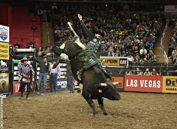 The Baddest Bull Rider Has a Secret to Success  Always Pick the ... 5cdc08fce27